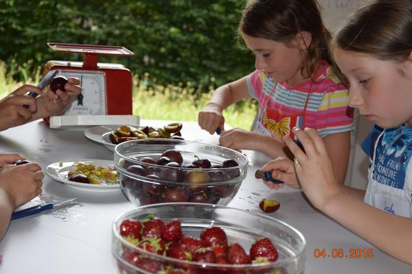 marmelade kochen_obst kleinschneiden