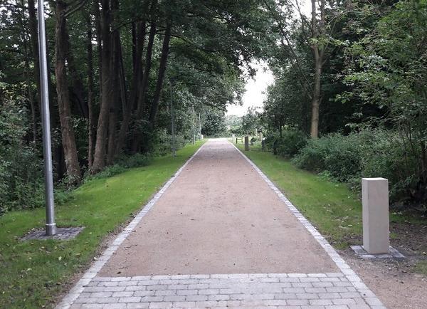 602_OP Stadtwäldchen Weg Stehlen